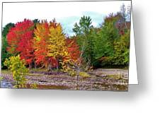Even Cloudy Days Sing In The Adirondacks 1 Greeting Card