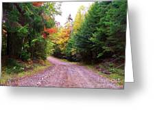Even Cloudy Days Sing In The Adirondacks 10 Greeting Card