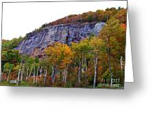 Even Cloudy Days Sing In The Adirondacks 3 Greeting Card