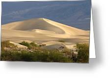 Evening Dune Greeting Card