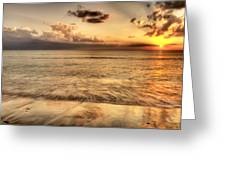 Evening Rays  Greeting Card