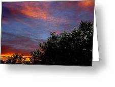 Evening Sky In Palm Desert California Greeting Card