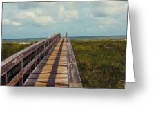 Evening Walk To The Beach Greeting Card