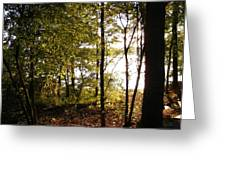 Evenings Warmth Greeting Card