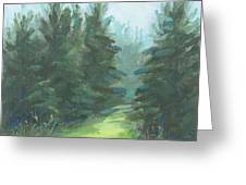 Evergreen Field Greeting Card