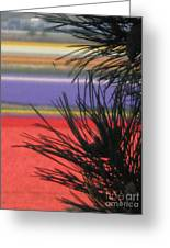 Evergreens And Tulips Greeting Card