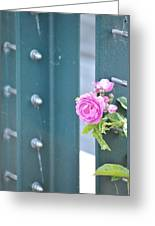 Every Rose... Greeting Card