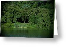 Everywhere And Nowhere - Holmdel Park Greeting Card
