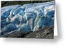 Exit Glacier Viewpoint Greeting Card