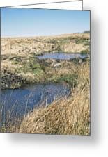 Exmoor Blanket Bog Greeting Card