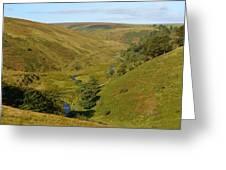 Exmoor's River Barle Greeting Card