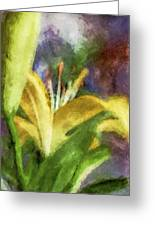Exotic Lily In Oil Greeting Card