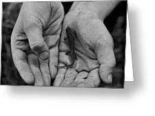 Explorer's Hands Greeting Card