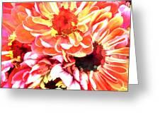 Explosion Of Bright Zinnias Greeting Card