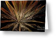 Explosion Of Love Greeting Card