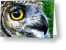 Eyes Of Owl's 19 Greeting Card