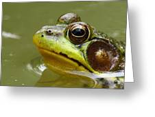 Face Of A Prince Greeting Card