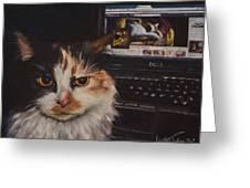Facebook Cat Greeting Card