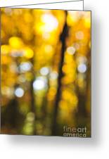 Fall Abstract Greeting Card by Elena Elisseeva