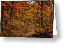 Fall At Center Point Trailhead Greeting Card