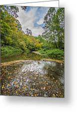 Fall At The Low Stream Greeting Card