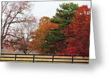 Fall Beauty Greeting Card