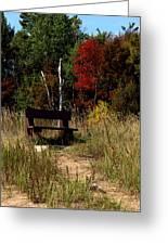 Fall Bench Dreams Greeting Card