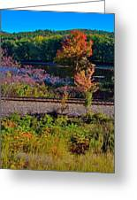 Fall By The River 5 Greeting Card