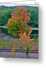 Fall By The River 7 Greeting Card