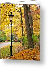 Fall Color And Lamppost Greeting Card