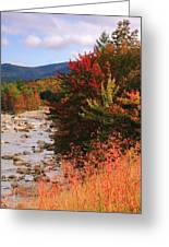 Fall Color In The White Mountains Greeting Card