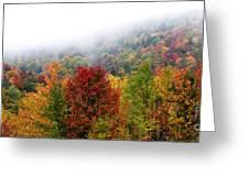 Fall Color Panoramic Greeting Card