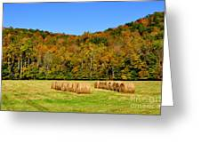 Fall Color Randolph County West Virginia Greeting Card