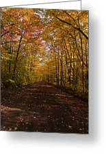 Fall Color Road Greeting Card