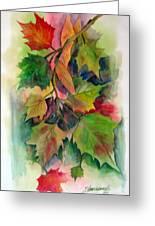 Fall Colors Greeting Card by John Smeulders