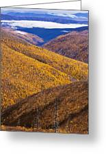 Fall Colours Along Top Of The World Greeting Card