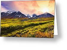 Fall Colours And Auriol Range Greeting Card