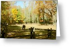 Fall Corral Greeting Card