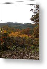 Fall Delight 10 Greeting Card
