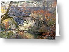 Fall Delight 3 Greeting Card