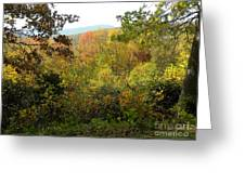 Fall Delight 7 Greeting Card