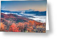 Fall Fog 1 Greeting Card
