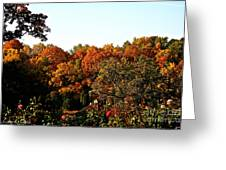 Fall Foliage And Roses Greeting Card
