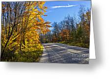 Fall Forest Road Greeting Card by Elena Elisseeva