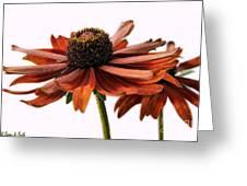 Fall Girls Greeting Card