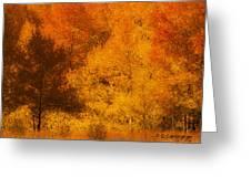 Fall Glory Greeting Card