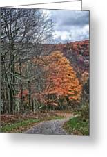 Fall Hiking Near Mountain Lake Greeting Card