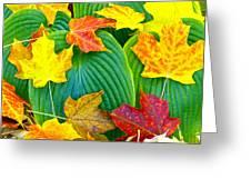 Fall Hosta Greeting Card