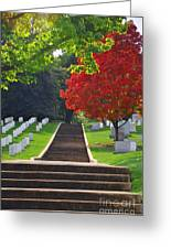 Fall In Arlington Cemetery  Greeting Card