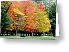 Fall In Michigan Greeting Card by Optical Playground By MP Ray